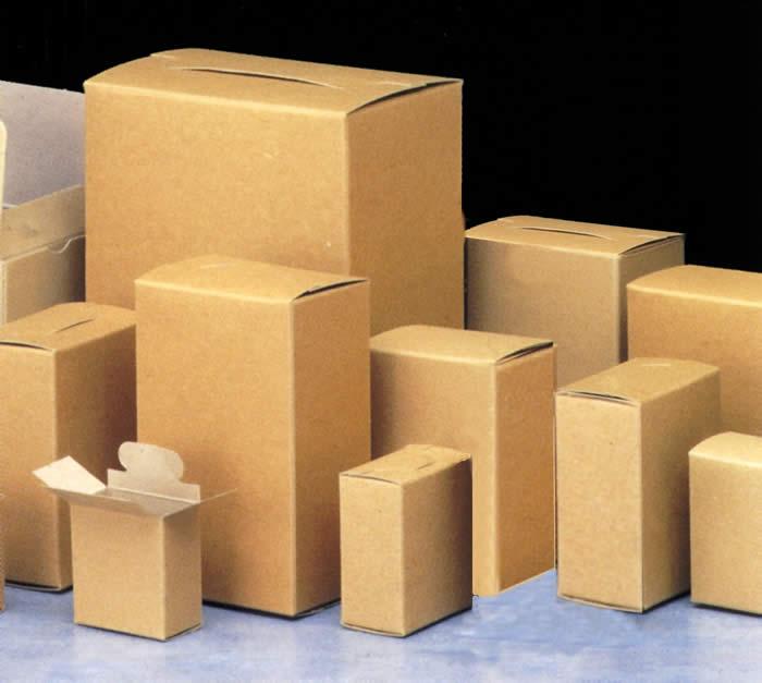 su-phat-trien-khong-ngung-cua-thung-carton-inantienhung.com